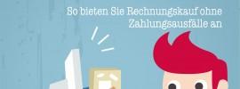 Internethandel de Titelbild Nr 118 08-2013 So bieten Sie Rechnungskauf ohne Zahlungsausfälle an